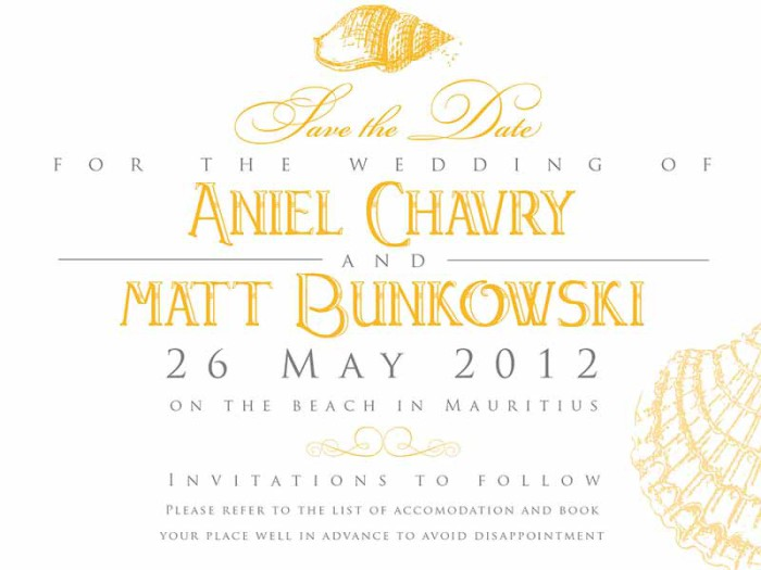Anel-Matt-Savethedate
