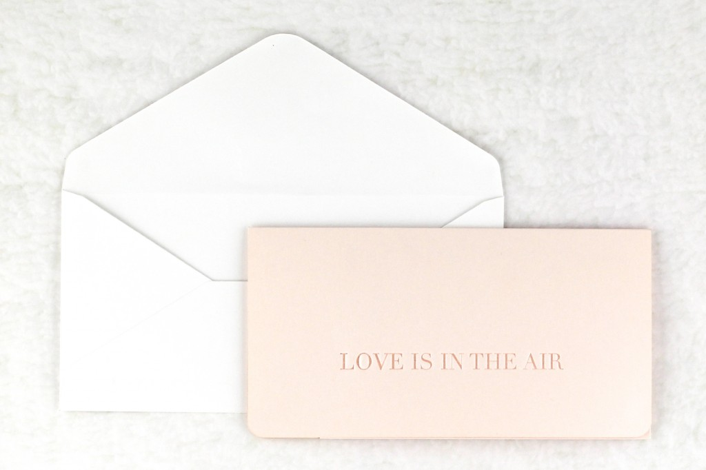 www.secretdiary.co.za | Love is in the Air - Boarding Pass Invite |SDI-6637