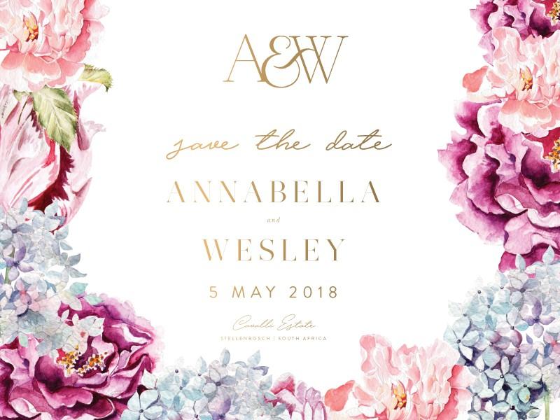 Anabella-STD